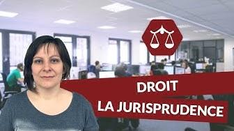 La jurisprudence - Droit - digiSchool