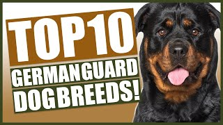 TOP 10 GUARD DOG Breeds In Germany