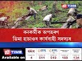 Mafia exploits Cachar Forest Department | Employee kidnapped