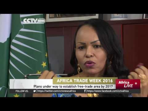 Africa Trade Week: Experts say dialogue key to establishing Africa's free trade area.