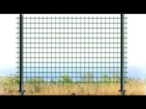 Забор из сетки с пластиковым покрытием