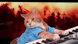 Repeat youtube video Keyboard Cat Awakens The Force