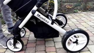 Обзор детской коляски (трансформер)