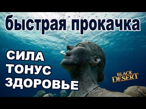 Black Desert (RU) - Прокачка Силы, Тонуса, Здоровья в Bdo (быстрый способ)