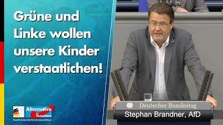 Grüne und Linke wollen unsere Kinder verstaatlichen! - Stephan Brandner - AfD-Fraktion im Bundestag