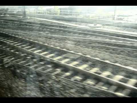 Egyptrixx  - DRIVE U CRAZY