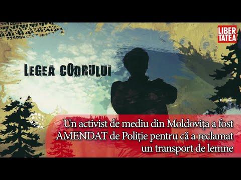Un activist de mediu din Moldovița, amendat de Poliție pentru că a reclamat un transport de lemne
