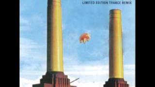 The Orb vs Pink Floyd - Sheep (pt 1)