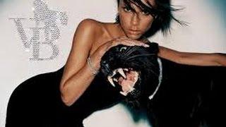 Смешные картинки про кошек и котят Выпуск №39  FUNNY CATS СМЕШНЫЕ КОШКИ