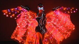 Светодиодное шоу  led show  Dragonfly  праздник, свадьба, корпоратив Киев, Закарпатье, Ужгород
