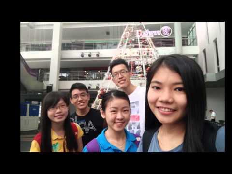 Managemnet Society (Direct Line Video)