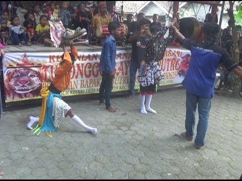 Perang Celeng Kesurupan (ndadi) - Turonggo Bayu Sapputro part 2