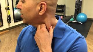 How to self-treat sternocleidomastoid muscle trigger points - trigger point release