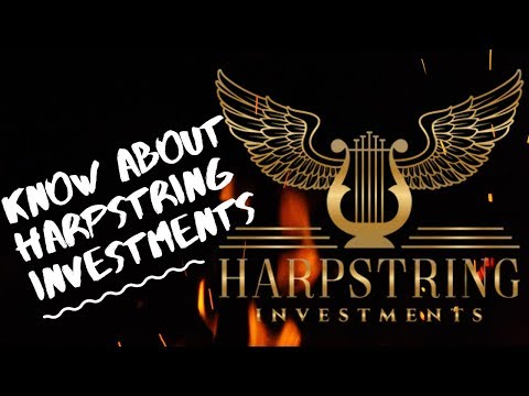 What Is Harpstring Investments | Best Offer For FX Fund Manager-2019|Learning From My Mentor