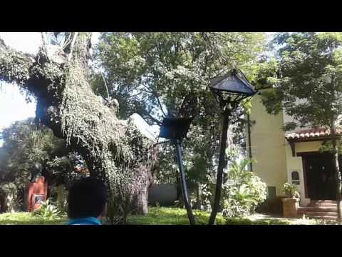 Ingreso a la Escuela de El Solar de Artigas en Asunción Paraguay