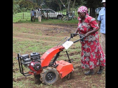 Farmers' Cooperative in Zambia