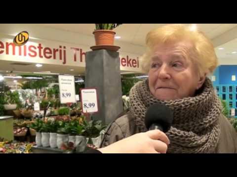 Alles Over Helmond | weekoverzicht 3  2017