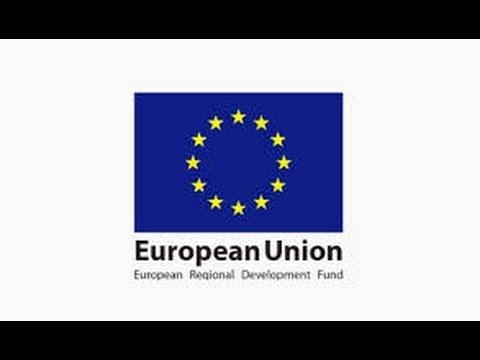 FEAs: 7 EU Dimension