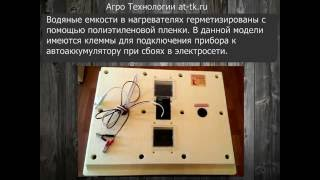 инкубатор золушка на 70 яиц автоматический переворот 12 220v видео