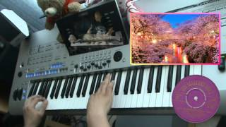 Cherry Pink & Apple Blossom White - Cereza rosa Gummy Mambo played by Ronald on Yamaha Tyros 4