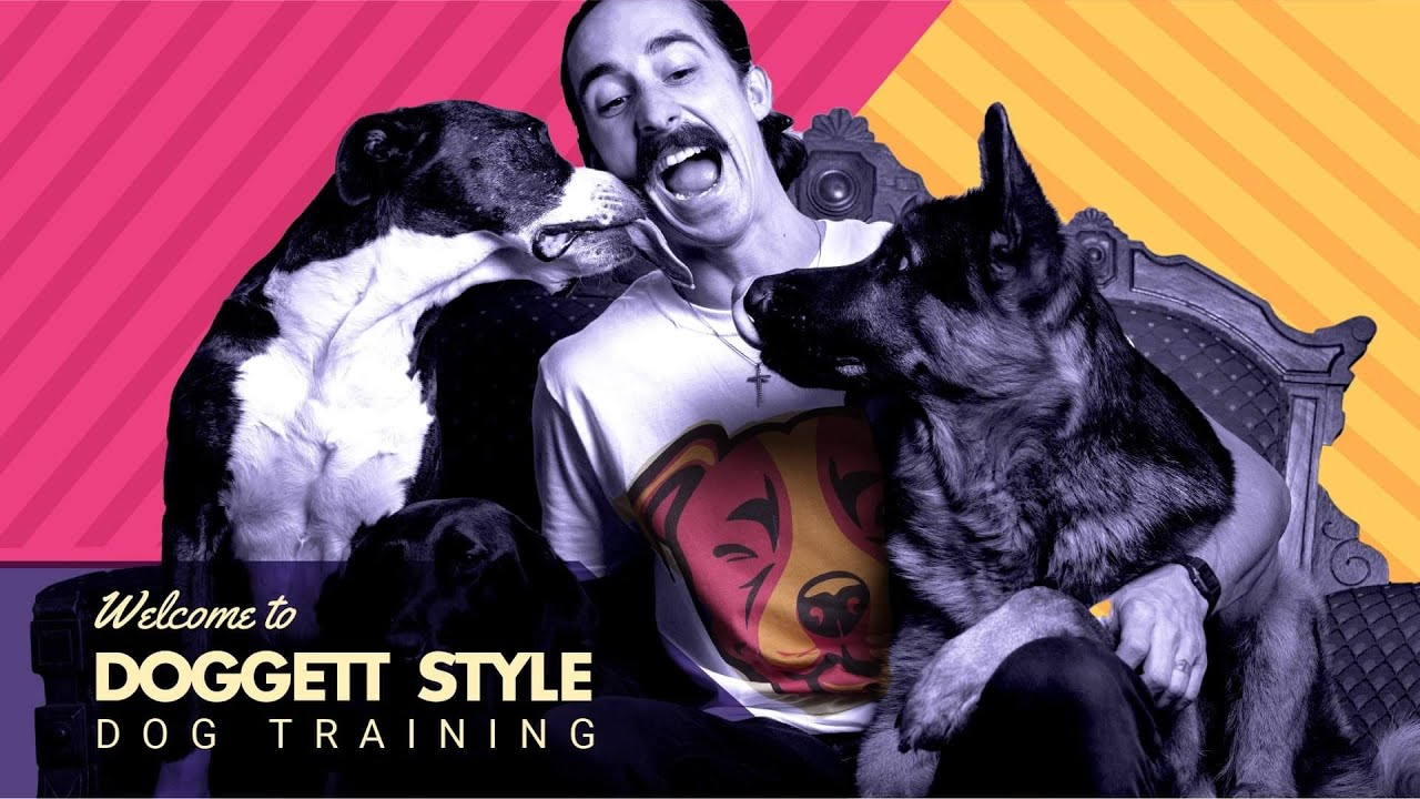 A Dog Trainer at Your Convenience