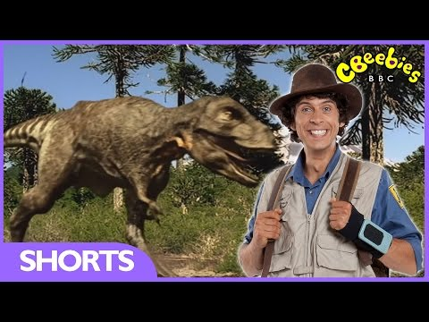 Tyrannosaurus Rex Facts - Andy's Dinosaur Adventures - CBeebies