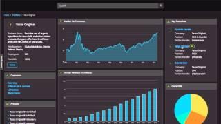 IBM Watson Wealth Management Demo Dec 5 V1