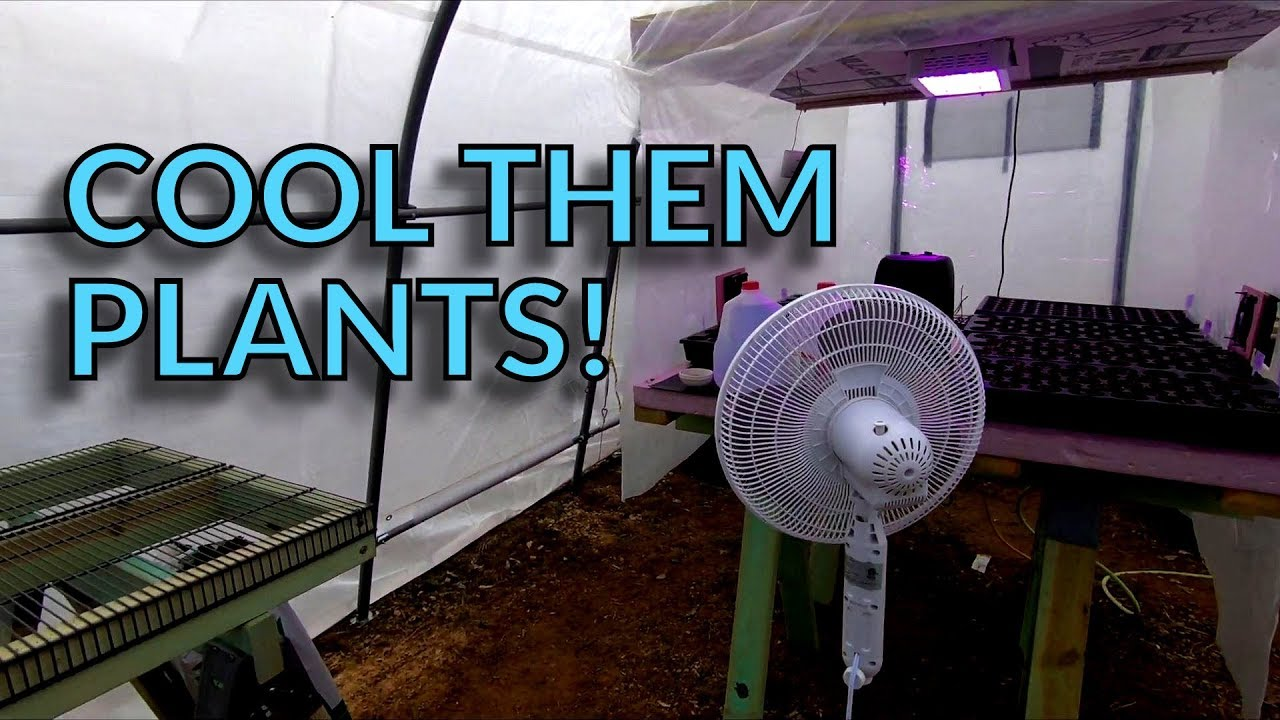 Greenhouse Fans and Ventilation #1