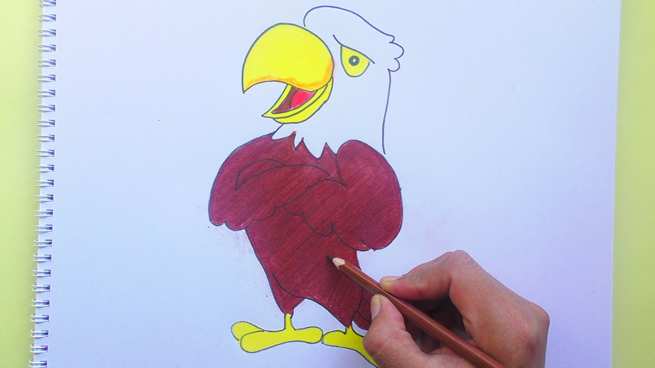 Como Aprender Dibujar Animales