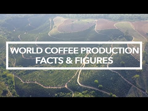 World Coffee Production - Facts And Figures