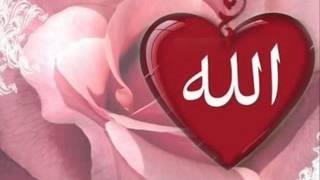 Mestica - Demi Cinta Zainab