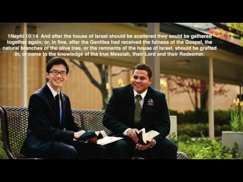 Scattering And Gathering Of Israel