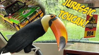toucan-explores-jurassic-park-for-the-first-time-jp-explorer