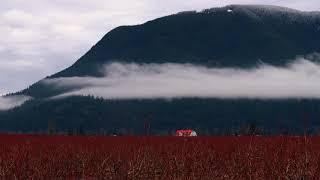 Time-lapse Nicomen Island Cloud Movement