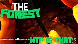 WTF IS THAT!? | The Forest (Creepy/Funny moments)