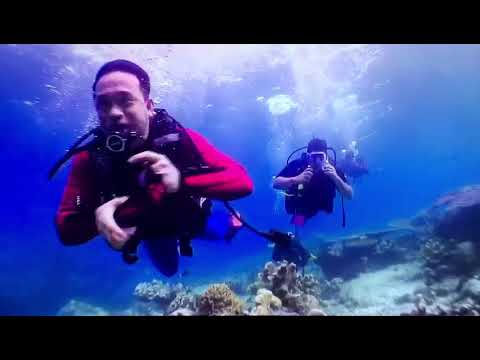 Borneo World Dive. Sipadan diving Semporna Sabah. Call us +60138811769