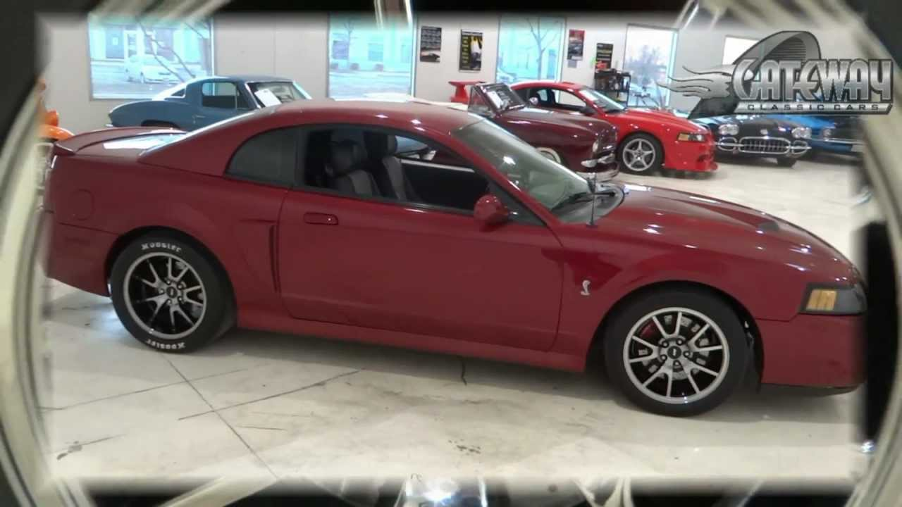 2003 ford mustang cobra for sale in chicago 214 chi youtube