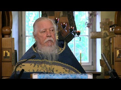 Протоиерей Димитрий Смирнов. Проповедь о достижении жизни вечной через веру во Христа