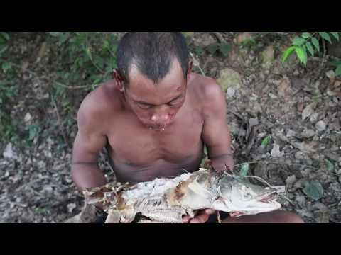 Primitive Technology: making trap catch 10 kg fish for cooking