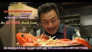 MC VIỆT THẢO- CBL (662)- Ăn CÁ HỒNG (Rock Cod) ở TÂN CẢNG NEWPORT SEAFOOD RERSTAURANT.