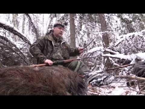Охота с западно-сибирскими