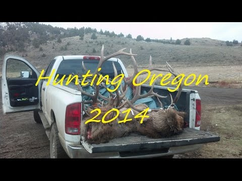Oregon Big Game Hunting... Bighorn, Elk, Blacktail And Mule Deer