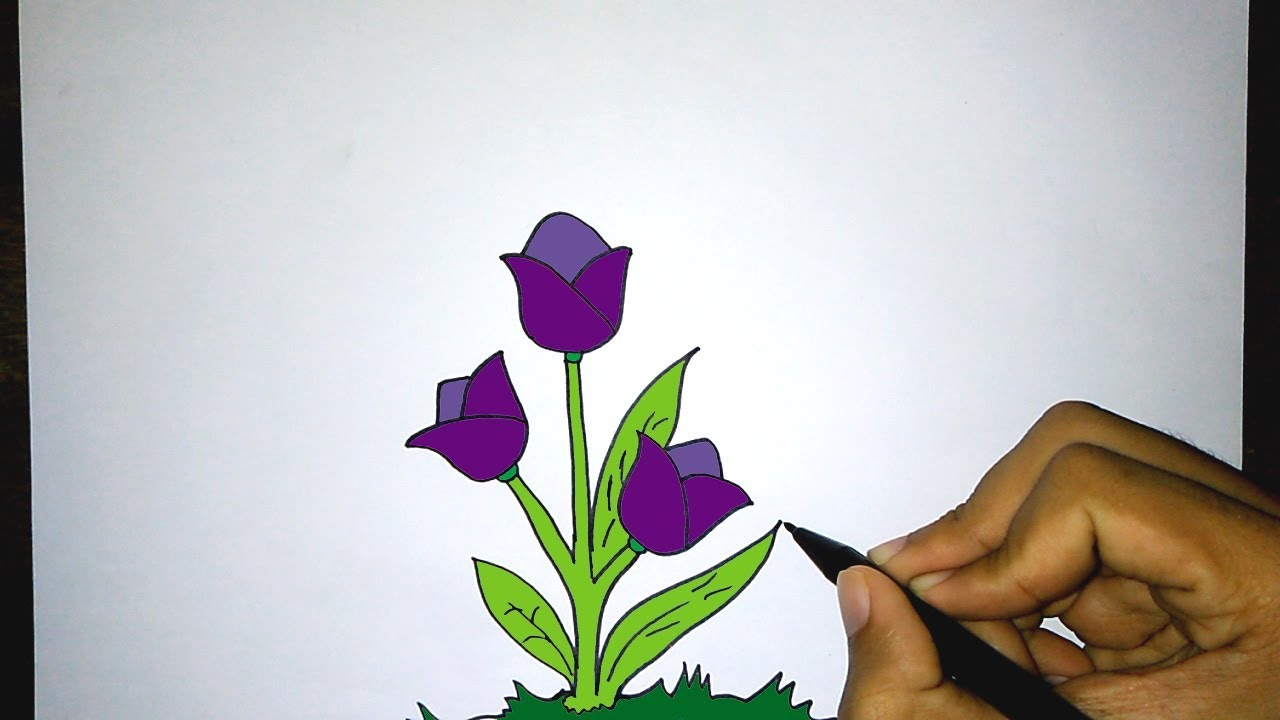 Cara Mudah Menggambar Bunga Mekar How To Draw A Blooming Flower Youtube
