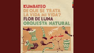 Play Orquesta natural