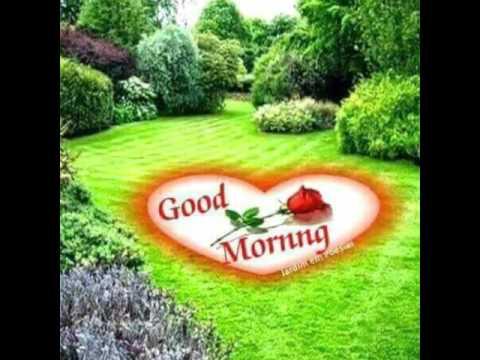 Good Morning Madam