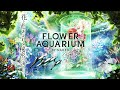 マクセル アクアパーク品川「FLOWER AQUARIUM BY NAKED –secret sea-」