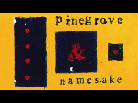 Pinegrove - Namesake