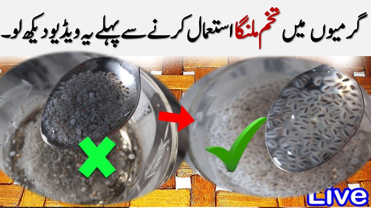 Tukh Malanga For Weight Loss In 7 Days Basil Vs Chia Seeds & Tukh malanga k Faiday