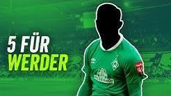 Werder Bremen: Diese 5 Transfers bringen Bremen den Erfolg zurück!