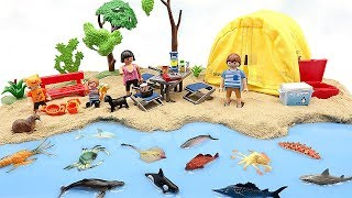 Learn Sea Animal Names For Kids.  Diy Beach With Camping Playmobil, Sand, Slime!